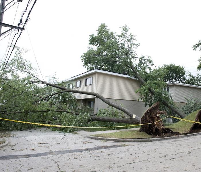 Storm Damage Storm Damage in Cedar Hill