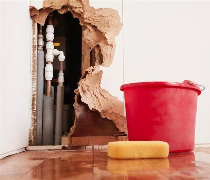 Why SERVPRO The Real Truth Behind Effective Water Damage Remediation in Dallas