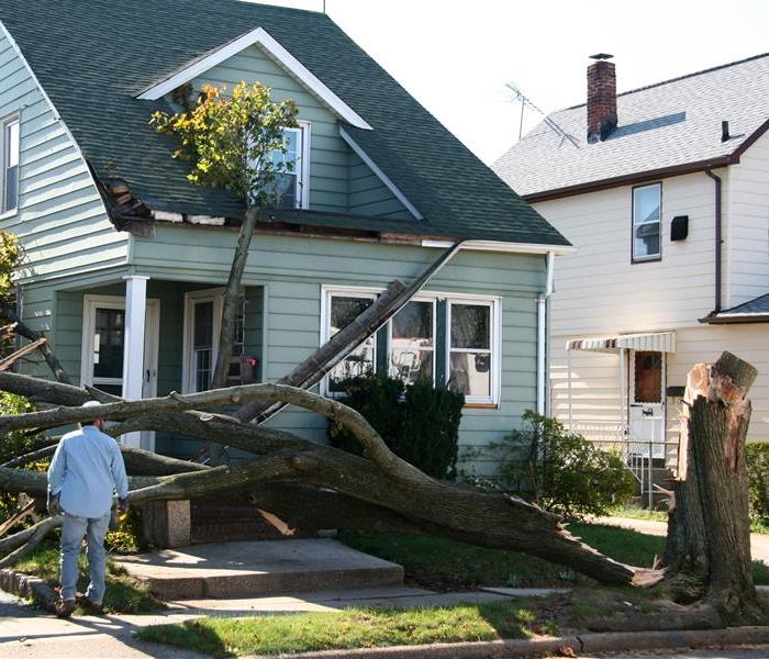 Storm Damage Returning to Normal after Storm Damage in Cedar Hill