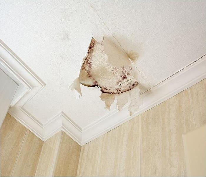 Peeling paint because of a water leak in plaster ceiling