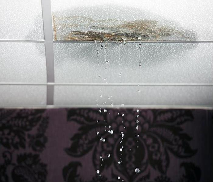 Water Damage Water Damage In Dallas Can Easily Affect More Than What You Can See