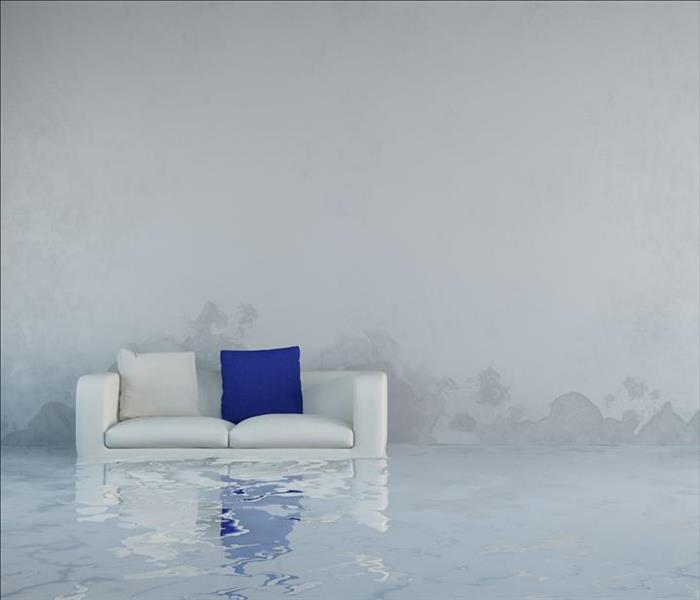 Water Damage Water Removal in Dallas--Advice on Important Features for Restoration