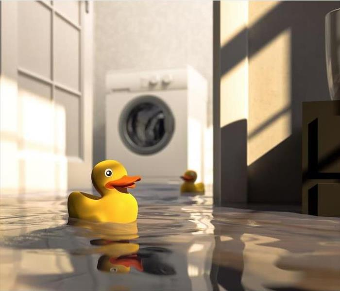 Water Damage How Do Professionals Deodorize Your Dallas Home After a Water Damage Incidence?